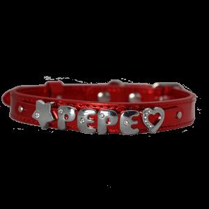 collar con nombre para perros