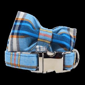 collar para perro grabado