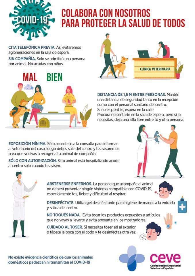 Recomendaciones para nuestras mascotas durante el Coronavirus