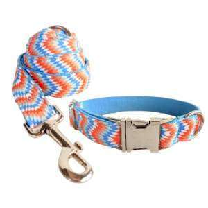 correa y collar para perro personalizado escamas