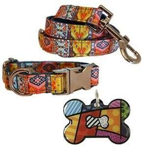 Packs Descuento (Collar + Correa + Placa)