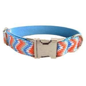 collar para perro personalizado escamas