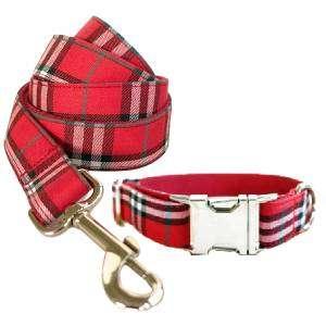 correa y collar para perro personalizado escoces