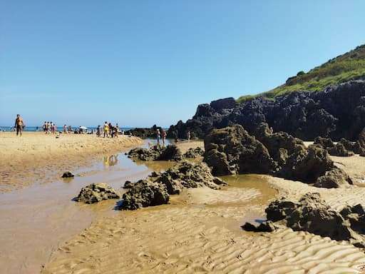 playa para perros playa helgueras noja cantabria