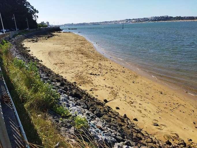 playa para perros muelle de somo